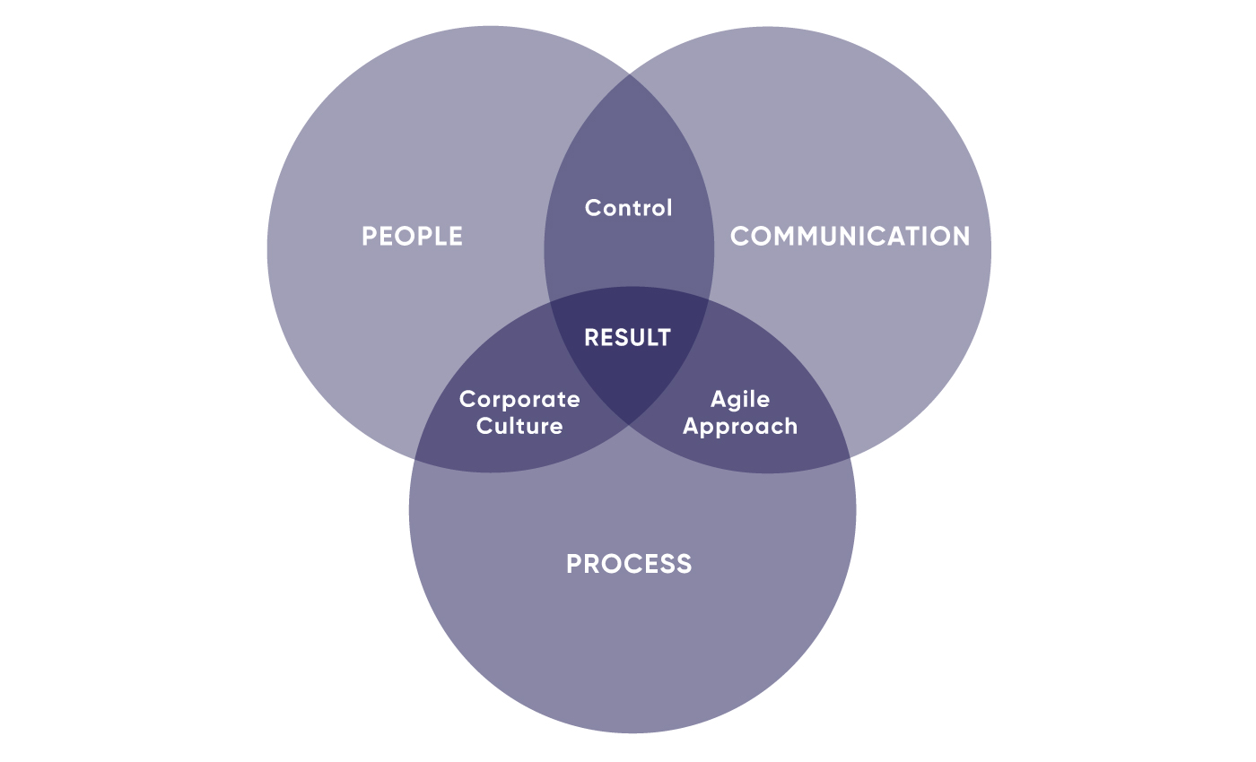 Components of software outsourcing development in three circles