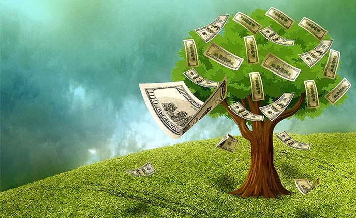 Data mining money tree