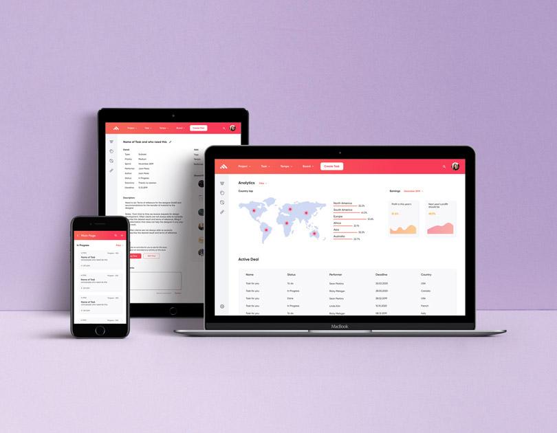 Interface of a loan adviser application